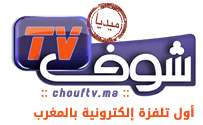 logomedia